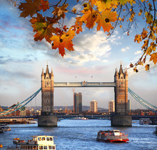 Tower Bridge mit Herbstlaub in London, England