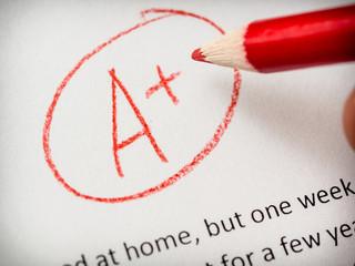 Top mark on essay