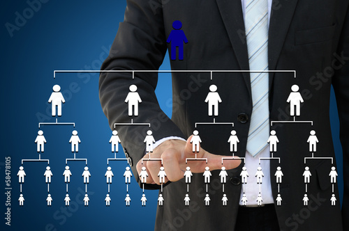 Business hand touching organization chart