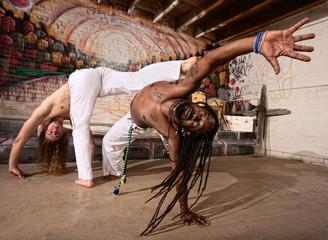 Expert Capoeira Performers