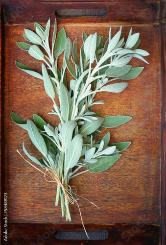 sage plant on wooden table