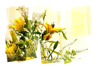 yellow lilies collage