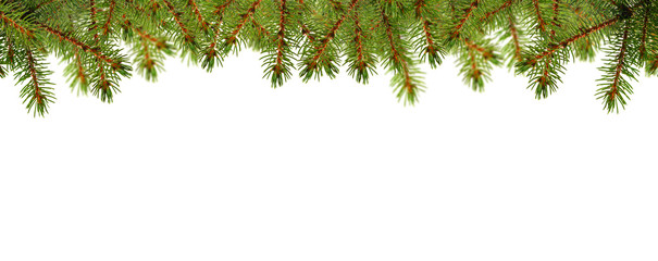 Weihnachtskarte mit Tannengrün