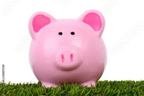 Piggy bank grass always greener