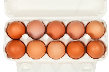 top view of chicken eggs in cardboard box