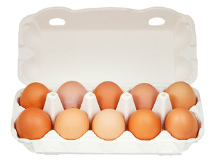ten chicken eggs in cardboard container