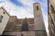 Barcelona: Gothic Cathedral of Santa Eulalia in Barri Gotic