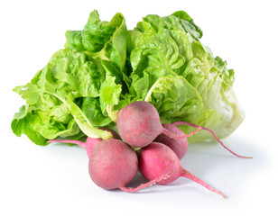 Heap Of Ripe Radish and lettuce