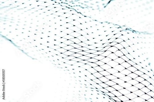 Fishnet - 58505157