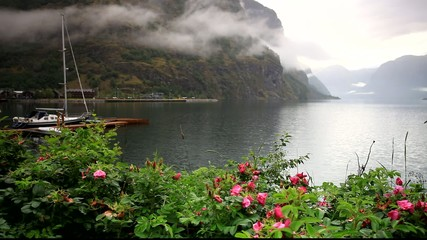 Norwegian Fjord, Flam Norway