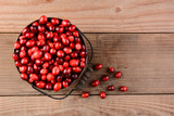 Cranberries in Bucket on Wood Table