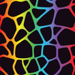 Rainbow Giraffe Pattern