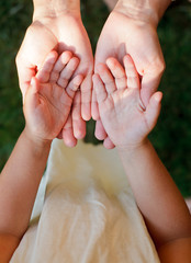 Child showing hands
