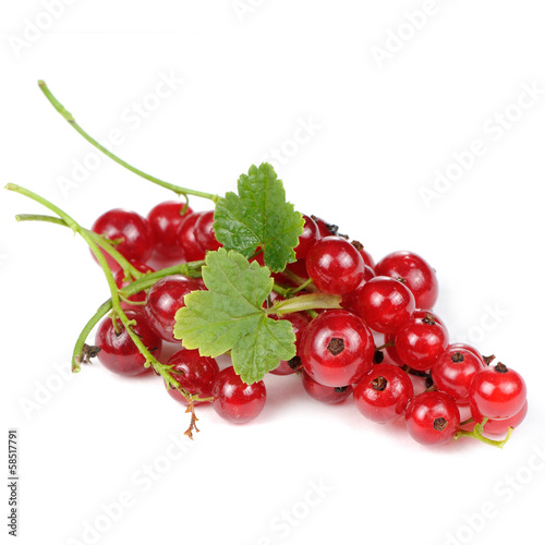Red Currants with Green Leaves Isolated on White Background