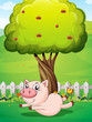 A playful pig under the cherry tree