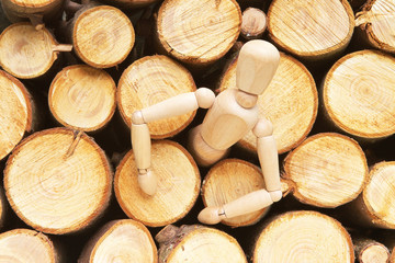 Wood dolls birth