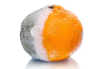 Spoiled tangerine