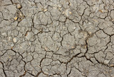 Cracked Brown Soil. Seamless Tileable Texture. poster