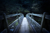 Bridge To Darkness