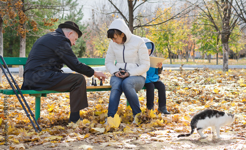 Family playing chess in the park with their cat