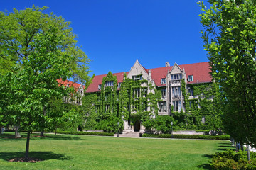 Ivy clad halls at University of Chicago