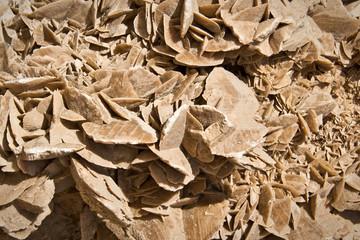 Rose des sables macro
