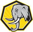Angry Elephant Head Side Cartoon