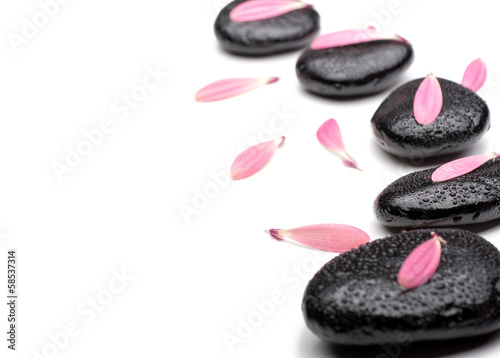 Spa stones with petals  on isolated white