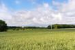 Agricultural landscape in France