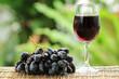 Blue grape fruit juice and Grape Fruit