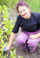An elderly woman grows fresh vegetables on garden beds
