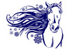 head of horse cartoon vector  illustration