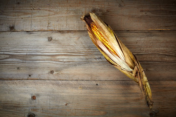 dry corn on against on a wooden table