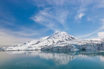 Lamplugh glacier in the Glacier Bay national park.