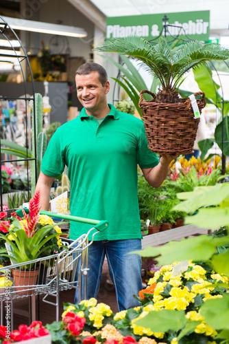 kunde kauft zimmerpflanzen
