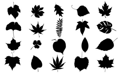 Leafs vector set