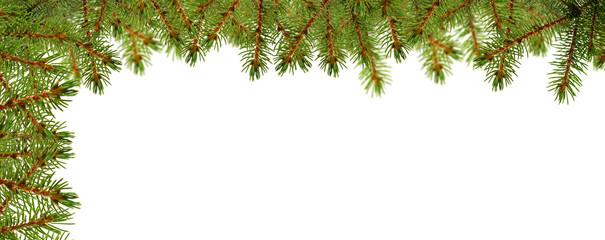 Weihnachtskarte mit Tannenzweigen