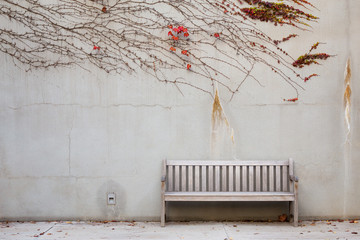 Relaxation with bench in garden