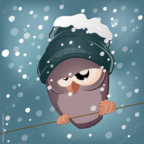 vogel winter kalt schnee lustig stockfotos und lizenzfreie vektoren auf bild. Black Bedroom Furniture Sets. Home Design Ideas