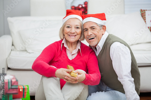 Smiling Senior Couple Wearing Santa Hats