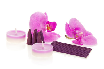 Flowers of an orchid and the aromatic set, isolated on white