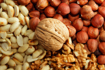 Walnut in the center of the background from the nuts
