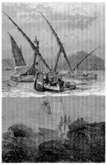 Coral Fishing - 19th century