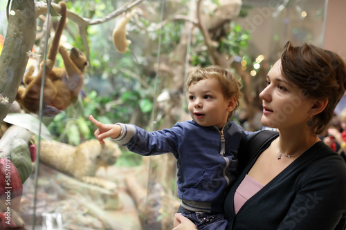 Mother and son looking at jungle