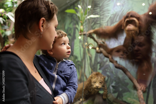 Mother tells her son about monkey