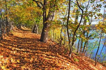 Uferweg im Herbst