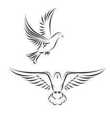 stylized dove in flight