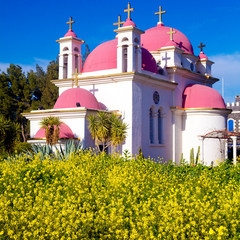 Orthodox Church and Mustard Field near Galilee Sea