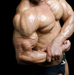Arm and torso of muscular male bodybuilder flexing biceps