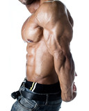 Detail of bodybuilder torso: abs, pecs, tricep and arm poster